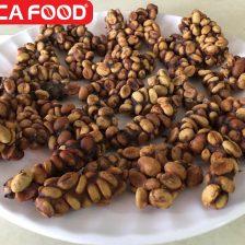 Mua Cà Phê Chồn Thô Arabica Giá Sỉ Và Lẻ Cà phê