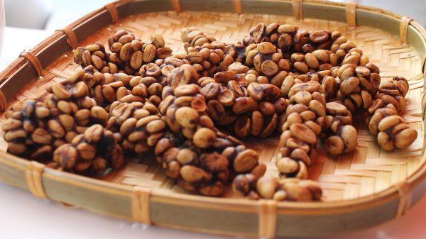 Cà phê chồn giá bao nhiêu, mua cà phê chồn ở đâu giá tốt?