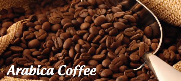 Dịch vụ cung cấp cà phê arabica hạt rang sẵn giá tốt toàn quốc