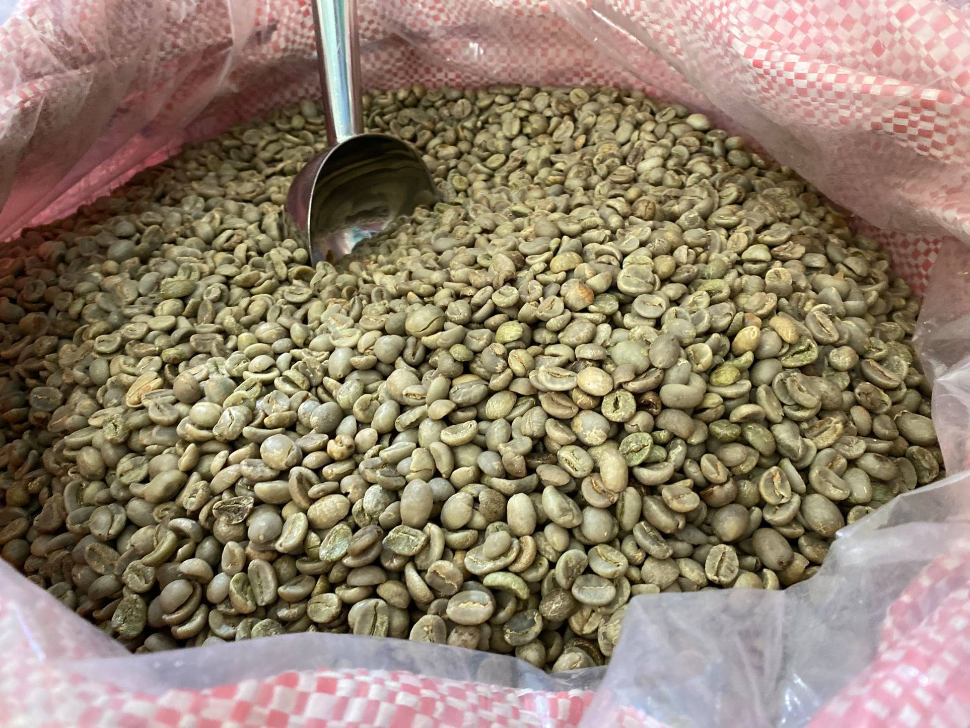 Vietnam green coffee bean supplier, coffee companies in vietnam, manufacturers, exporters, coffee bean supplier in Vietnam