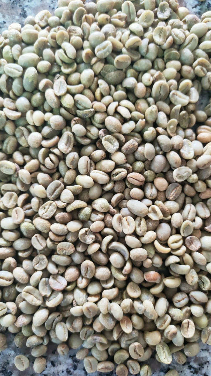 Mua cafe hạt ngon ở đâu, giá cà phê hạt rang mộc
